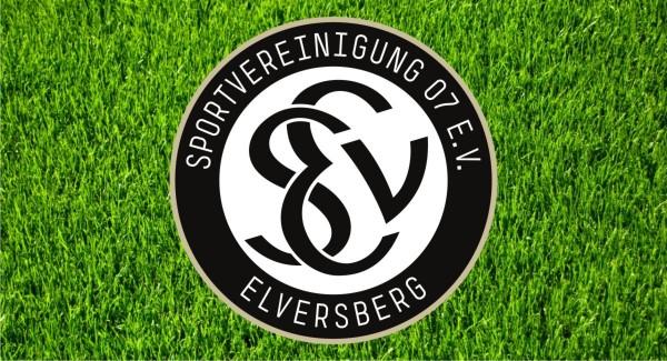 SVE_neu_igb.info