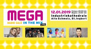 "MEGA – Die ""RADIO SALÜ in the mix live"" Party @ Industriekathedrale – Alte Schmelz"