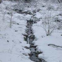 Wintereinbruch 2001