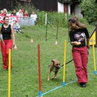 1. Hundeolympiade in St. Ingbert