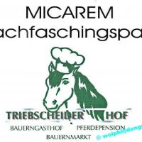 Micarem Nachfaschingsparty