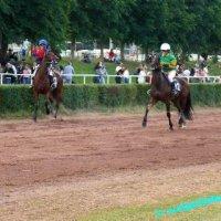 Pferderennen in Güdingen