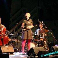 Jazz Festival 2010: Julian & Roman Wasserfuhr Quartett, Manuel Krass, Festival Band GO