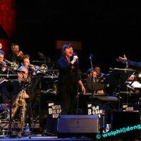 Jazz Festival 2010: Sebastian Studnitzky Trio, Oddjob Quintett, WDR Bigband meets John Taylor & Diana Torto