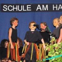"Musical ""Der verschwundene Hexenbesen"", Aufführung der Hasenfelsschule, Oberwürzbach"