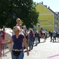 image st-ingbert_tag_der_goeren_und_lausbuben_2012_07-jpg