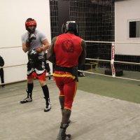 image sparring-doberstein-st_-ingbert15-jpg