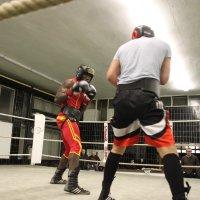 image sparring-doberstein-st_-ingbert18-jpg