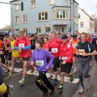 image 130427-djk_-stadtlauf-igb_-info_-9554-jpg