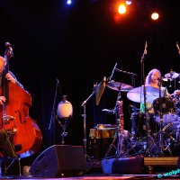 image jazz14-igb-info_6069-jpg