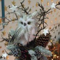 image weihnachtsmarkt-rohrbach-2014-300064-jpg