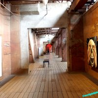 image 1506-urbanart-wolphi-0058-jpg