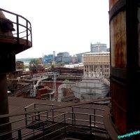 image 1506-urbanart-wolphi-0084-jpg