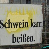 Almauftrieb Eschweilerhof