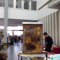 image 1510-ingobertusmesse-st-ingbert-wolphi-0005-jpg