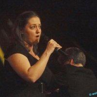 image 160415-jazzfestival-st-ingbert-wolphi-085-jpg