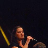 image 160415-jazzfestival-st-ingbert-wolphi-105-jpg