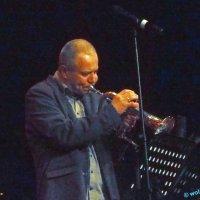 image 160415-jazzfestival-st-ingbert-wolphi-117-jpg