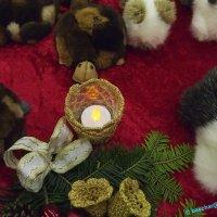 image 161026-rohrbach-weihnachtsmarkt-baschar-066-jpg