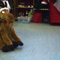 image 161026-rohrbach-weihnachtsmarkt-baschar-068-jpg